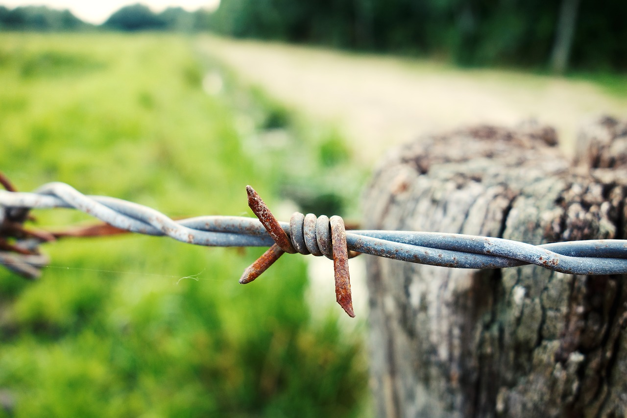 barbed-wire-3027191_1280